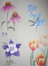 Entwürfe auf A3, Farbstift auf getöntem Papier (c) von Cordula Kerlikowski
