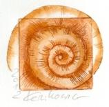 Schnecke_Zeichnung_Orange