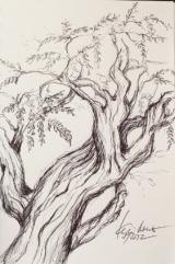 """Skizze im """"Botanique"""" - (c) Zeichnung von Cordula Kerlikowski"""