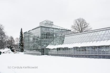 Im Botanischen Volkspark Pankow, Foto (c) Cordula Kerlikowski